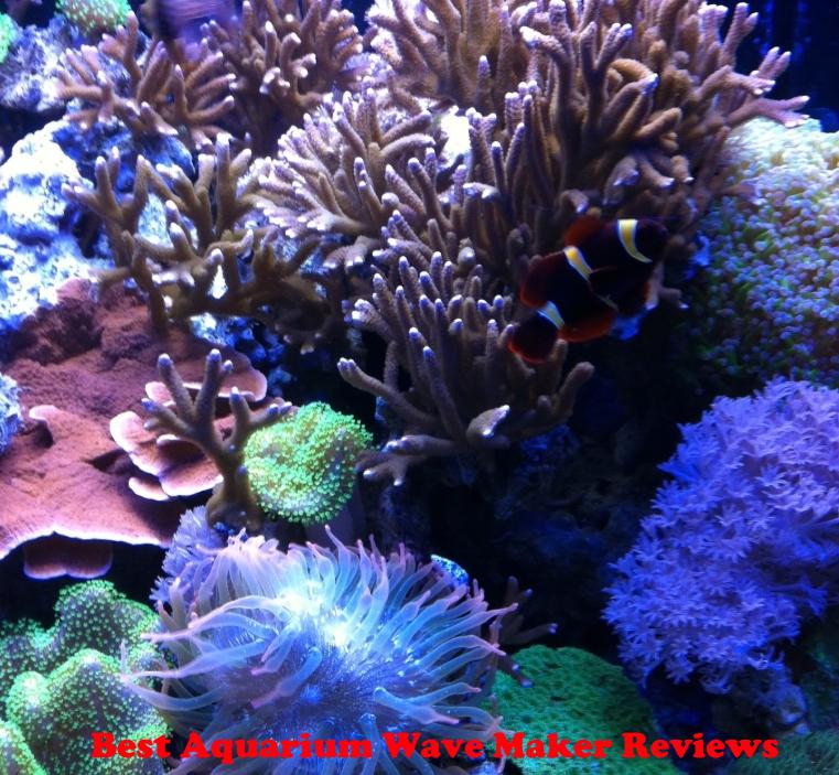 The Best Aquarium Wave Maker Reviews in 2020